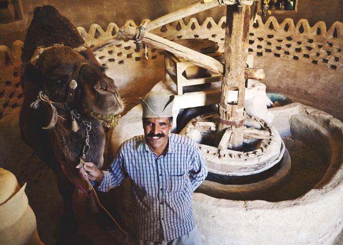 Der Besitzer der Kamelmühle