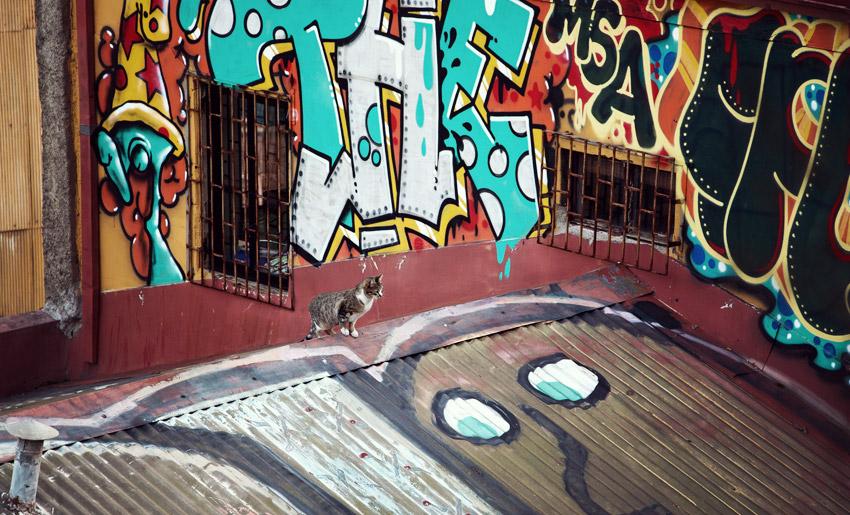 Streetart in Valparaíso